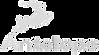 antelope-audio-vector-logo_edited_edited