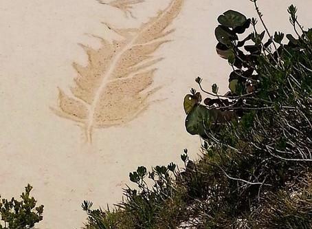 Heron's Flight - 2014 Beach Art Winner
