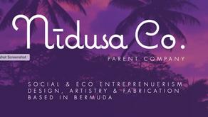 Nīdusa Parent Company Launch