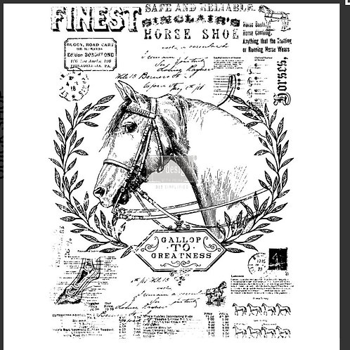Transfer , fine horsemen,Prima