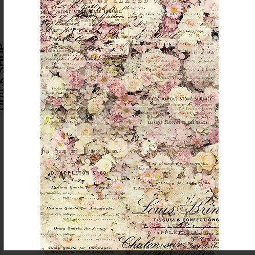 Risark,  floral & dream , Prima
