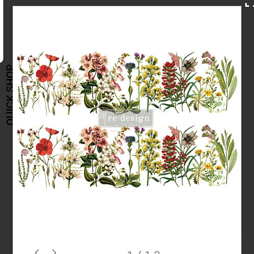 Transfer The Flower Fields,  Prima