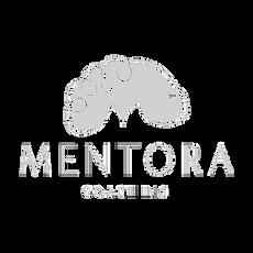 MENTORA COACHING