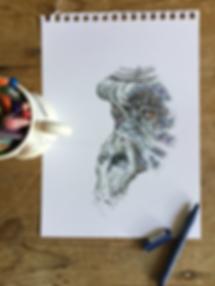 gorilla sketch pad.png