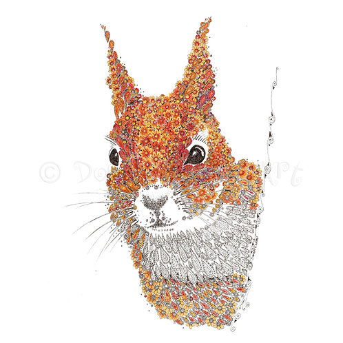 Red Squirrel [009]