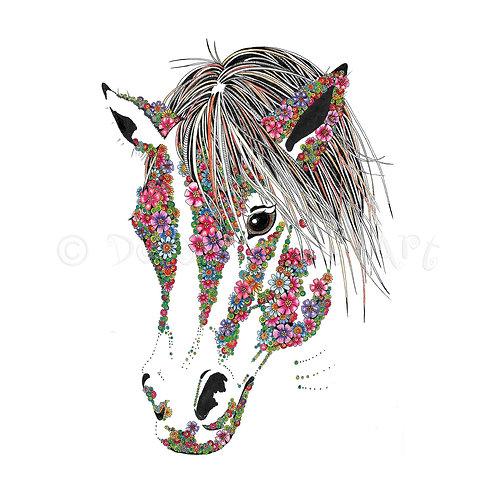 Pony [005]