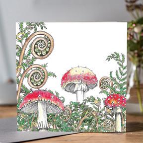 546 Woodland Fungi white.jpg