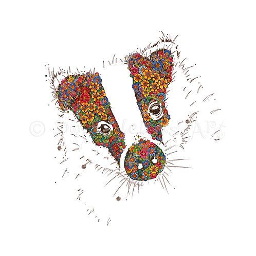 6 x Badger [004]