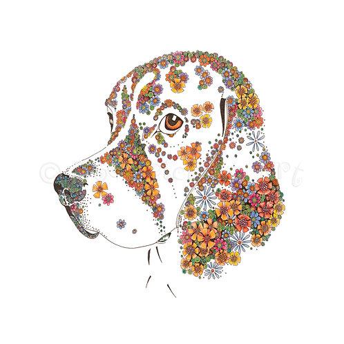6 x Beagle [006]