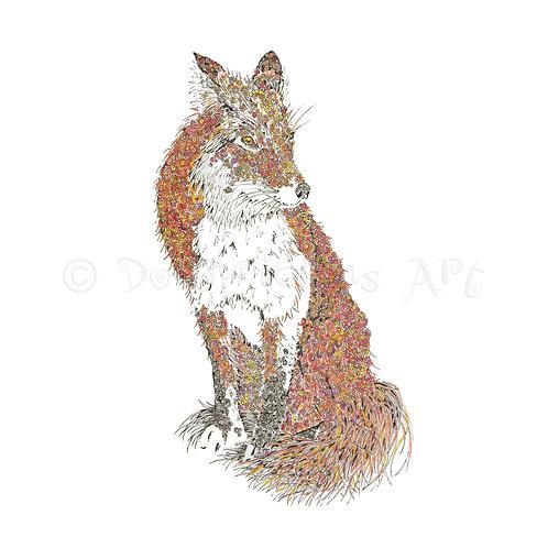 Fox [002]