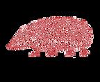 hedgehog%20red_edited.png