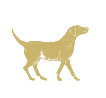 dog sandy.png