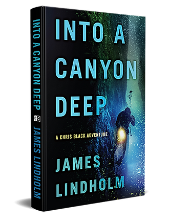 3D-Cover-Spine_Lindholm_INTO-A-CANYON-DE