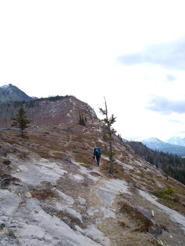The way up, stay on the ridge (left) do not go to much to the right (like us)