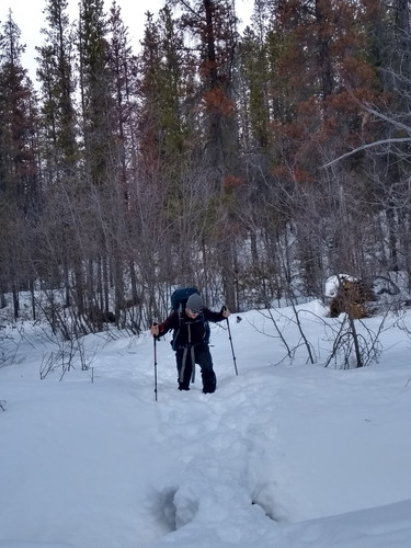 Really hard work without skis or snow shoes