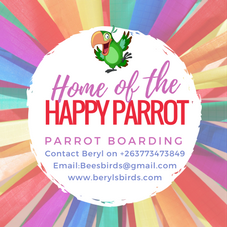 Home of the Happy Parrot Final Png