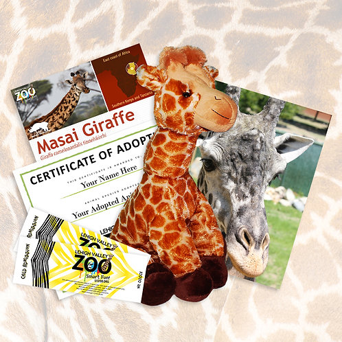 ADOPT An Animal - Masai Giraffe