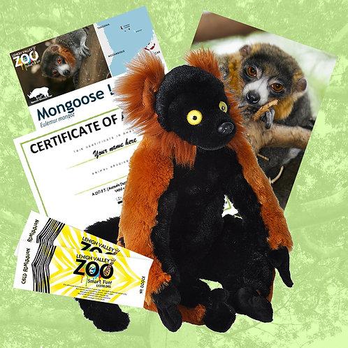 ADOPT An Animal - Mongoose Lemur
