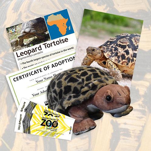 ADOPT An Animal - Leopard Tortoise