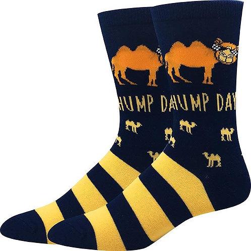 Hump Day Socks