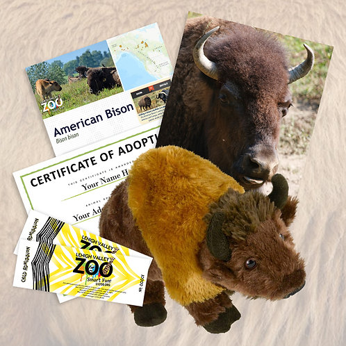 ADOPT An Animal - American Bison