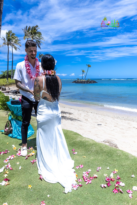 Wedding-Picture-at-Kahala-Beach-1A-201.jpg