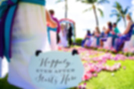 Happily ever after wedding in Hawaii