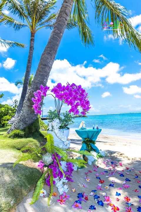 Kahala-resort-beach-in-Hawaii-2-11.jpg