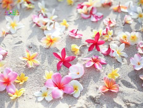 Bride & groom on a beach in Hawaii with rainbow plumeria flowers