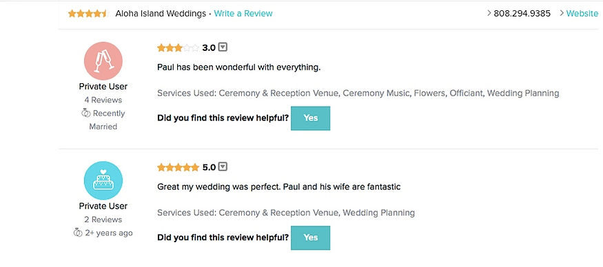 Hawaii Wedding review 44
