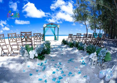 """""""HAWAIIAN KOA""""  Wedding Chairs"""