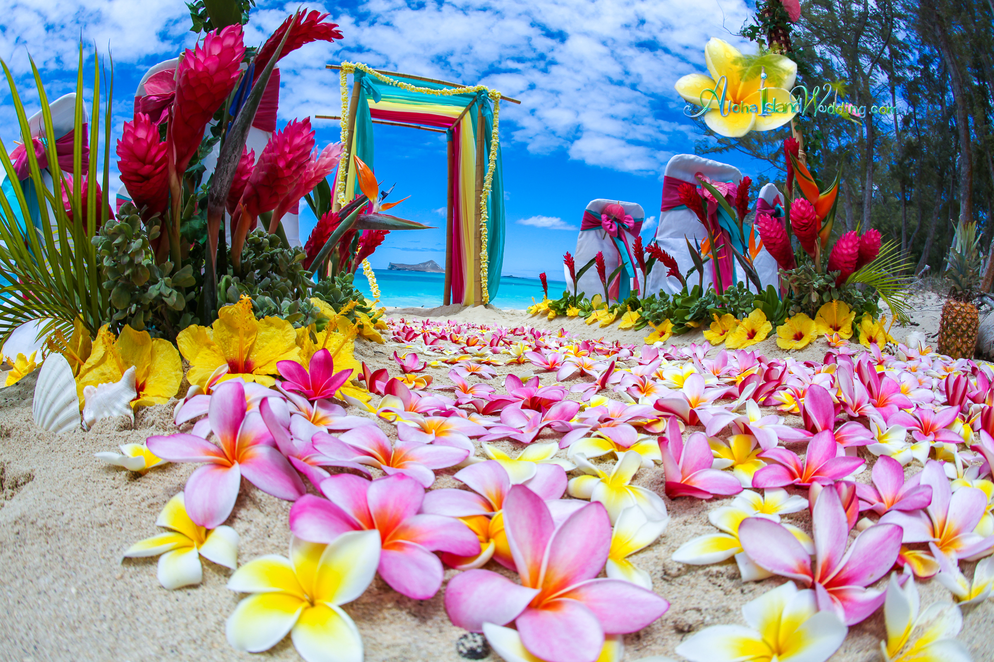 Plumeria flowers wedding arch
