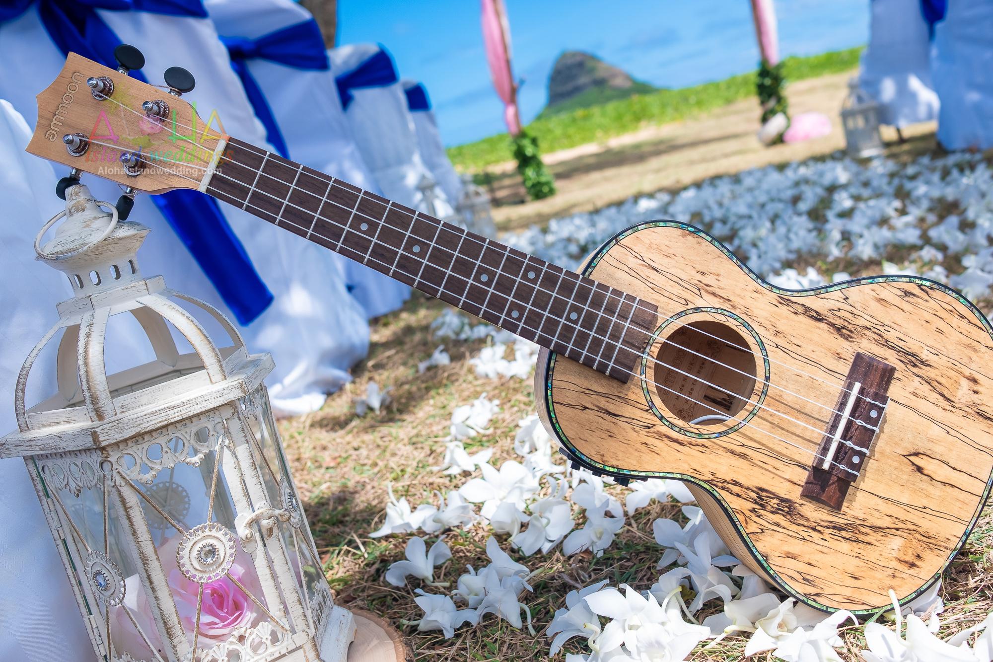 Hawaii weddings and events, Kualoa-9