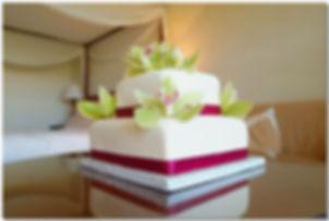 cake aloha wedding nina 1 132.jpg