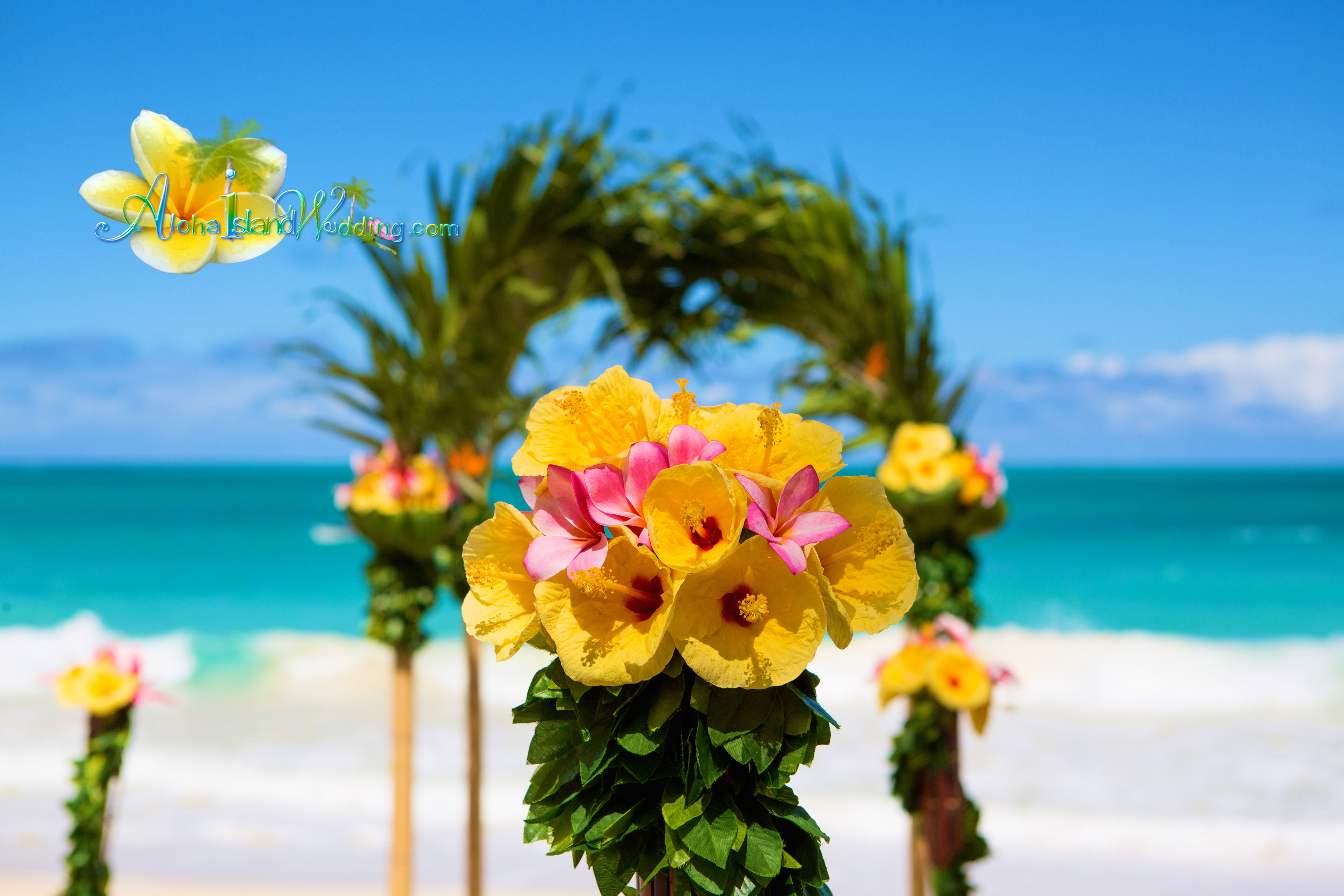 Hawaii Wedding Packages -99