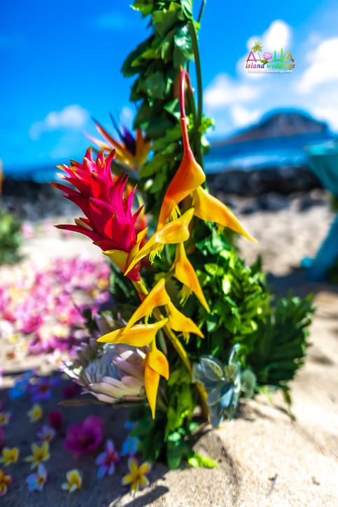 Vowrenewal-wedding-in-Hawaii-2-14.jpg