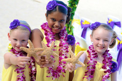 Hawaiian Wedding -186