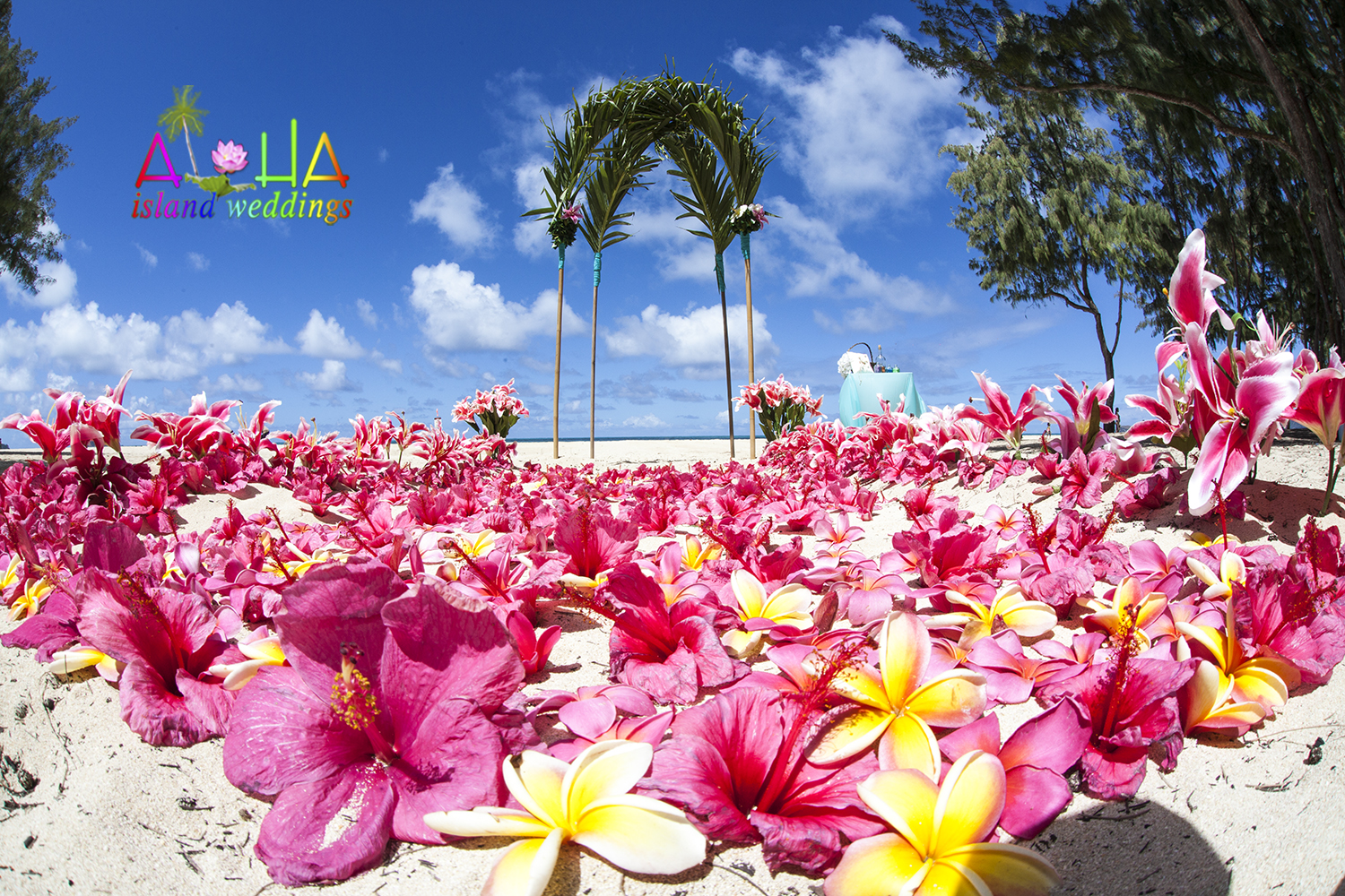 Hawaii Wedding Packages -13