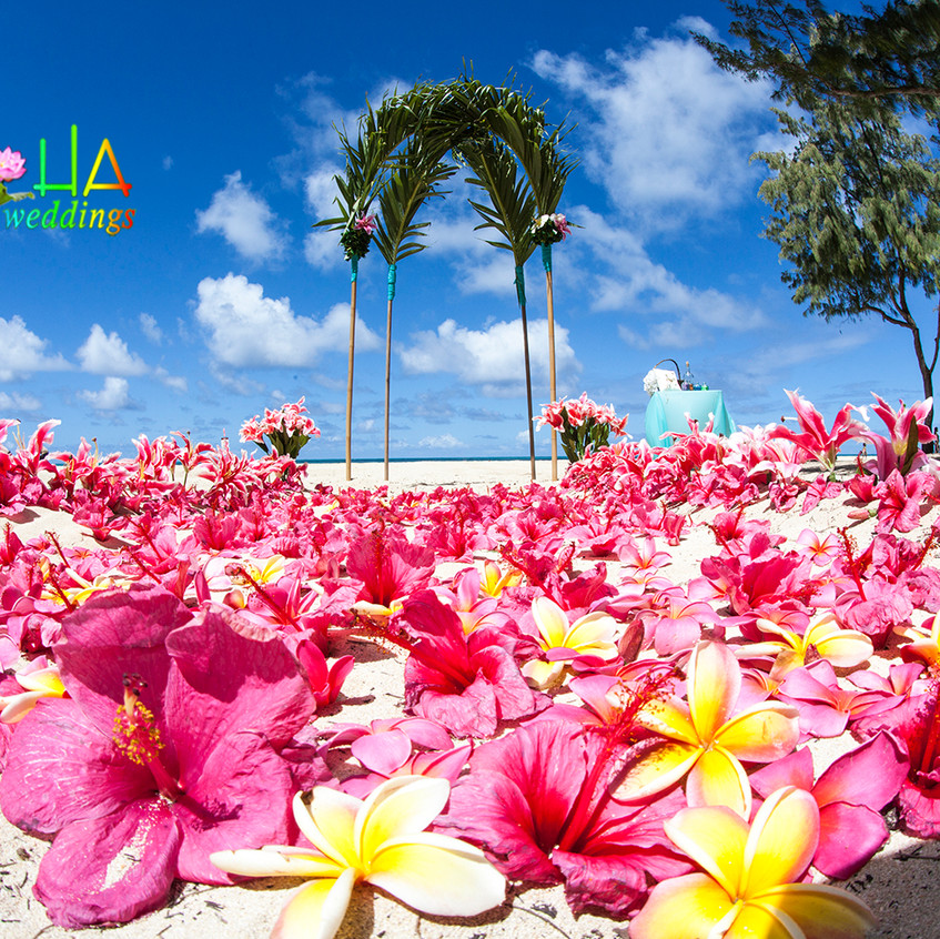 Hawaii beach weddings picture alohaislandweddings