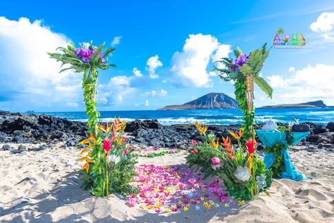 Vowrenewal-wedding-in-Hawaii-2.jpg