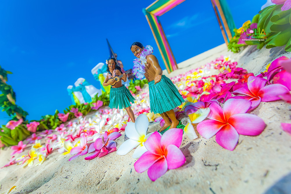 Beach wedding in Hawaii-alohaislandwedding