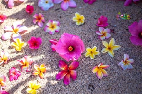 Vowrenewal-wedding-in-Hawaii-1-6.jpg