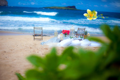 Rustic wedding in hawaii-48.jpg