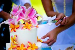 Wedding Cake in Hawaii-11