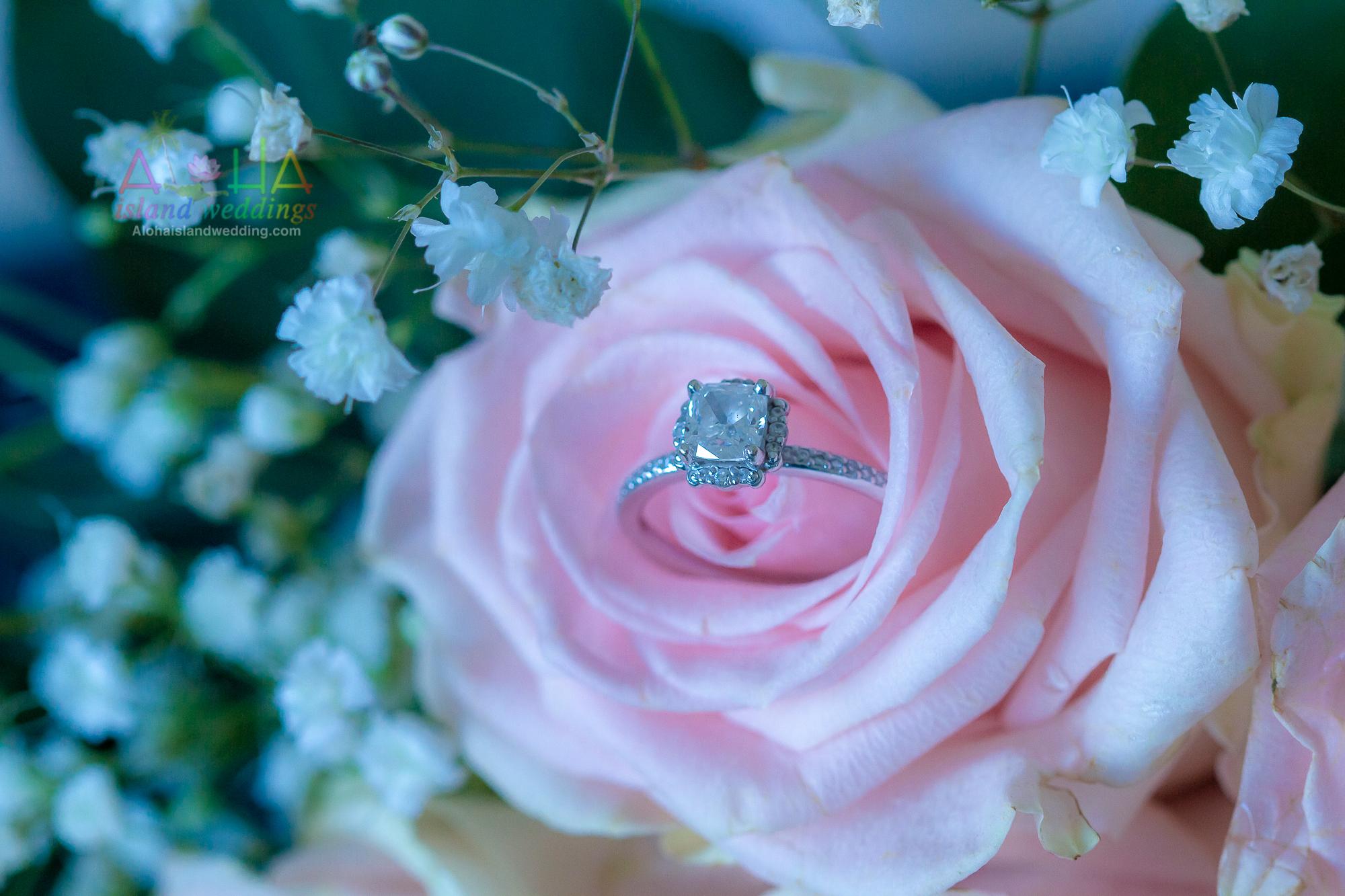 Hawaii weddings and events, Kualoa-344