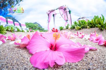 Hawaii-beach-ceremony-1-6.jpg