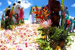 Hawaii Weddings-40