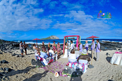 Beach-weddings-64.jpg