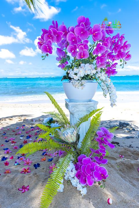 Kahala-resort-beach-in-Hawaii-2-10.jpg