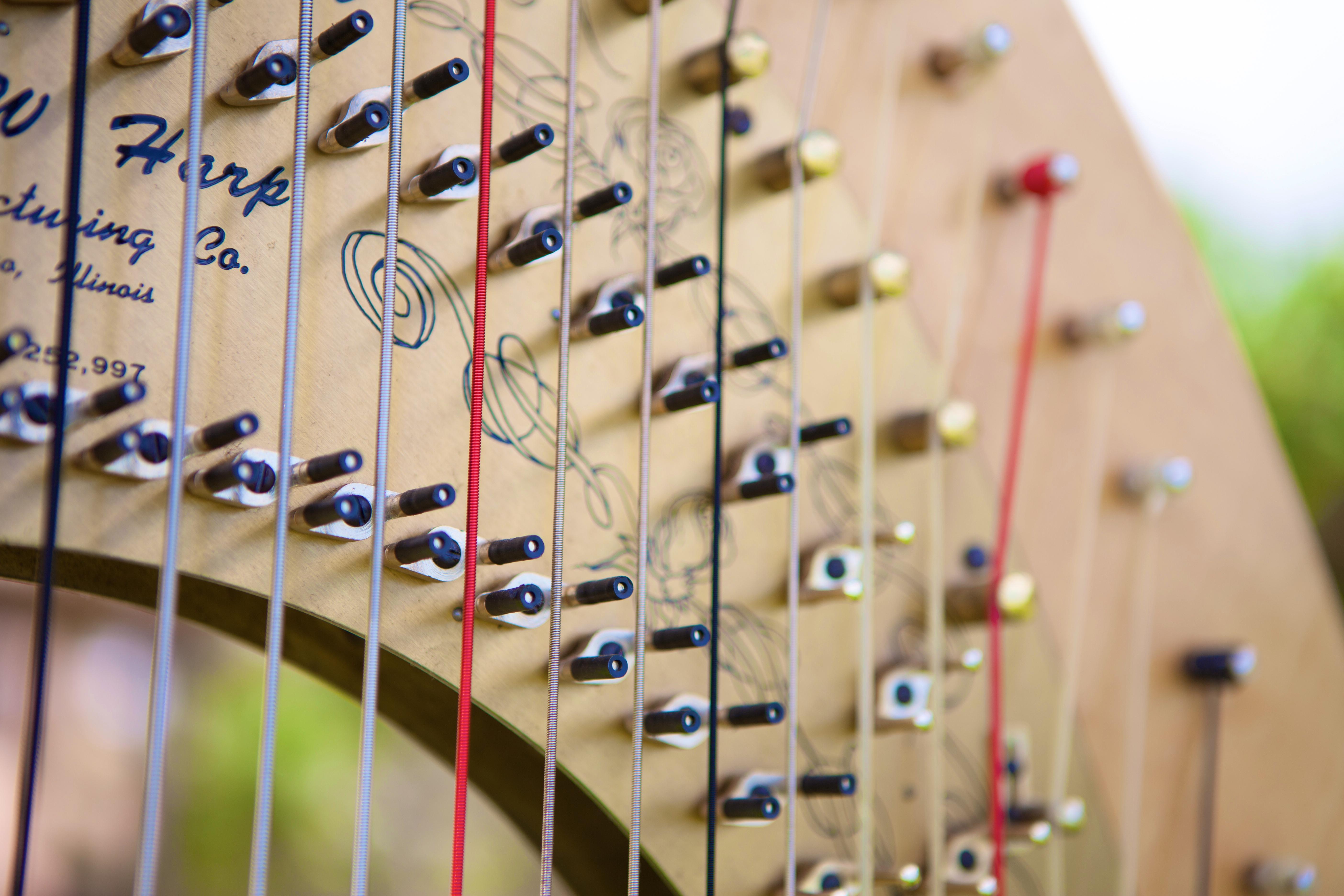 Harpist in Hawaii 1